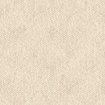 Picture of Fans Beige Texture