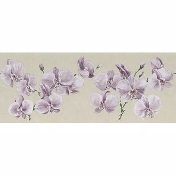 Lavender Orchid Border - Lucky Day
