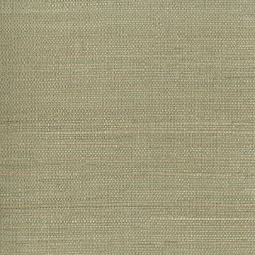 Picture of Kenjitsu Mint Grasscloth