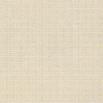 Picture of Nonen Champagne Paper Weave