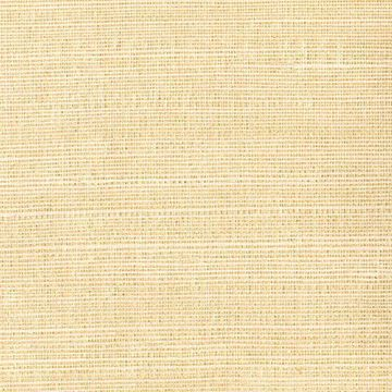 Picture of Klaudia Champagne Foil Grasscloth