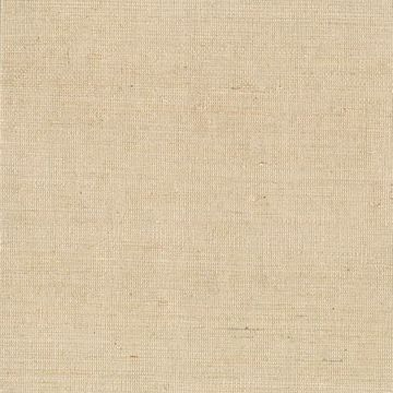 Picture of Ruslan Beige Grasscloth
