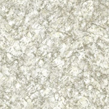 Picture of Alba Fog Marble Texture
