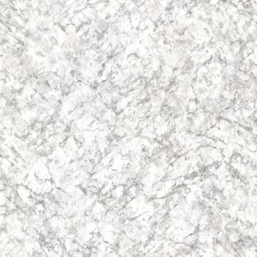 Picture of Alba Grey Marble Texture