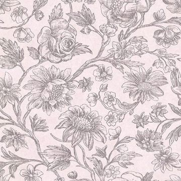 Picture of Kepler Light Pink Sketched Floral