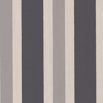 Picture of Orbit Charcoal Stripes