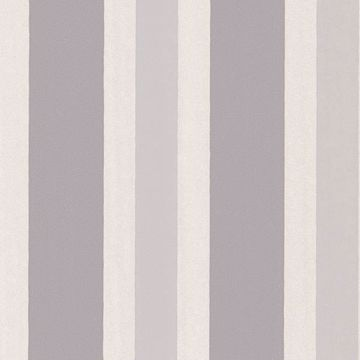 Picture of Orbit Grey Stripes