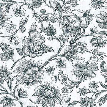 Picture of Kepler Light Blue Sketched Floral