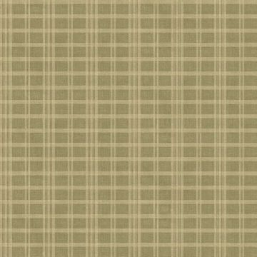 Picture of Prairie  Moss Gingham