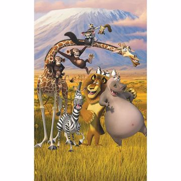 Picture of Madagascar Wall Mural