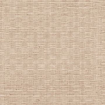 Picture of Texture Beige Woven