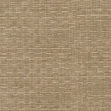Picture of Texture Light Brown Woven