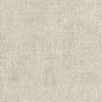 Picture of Texture Bone Flax