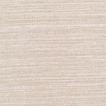 Picture of Texture Beige Zoster