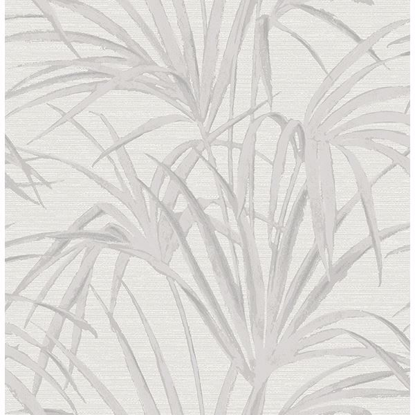 Picture of Reed Grey Palm