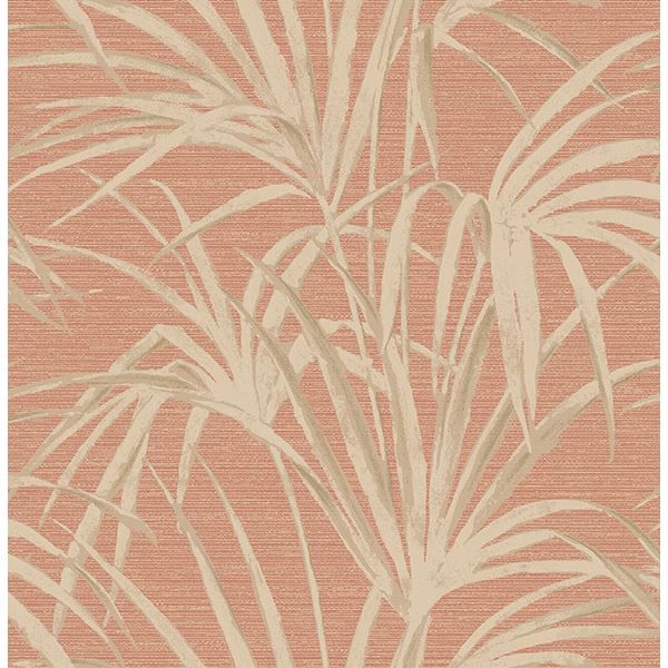 Picture of Reed Red Palm