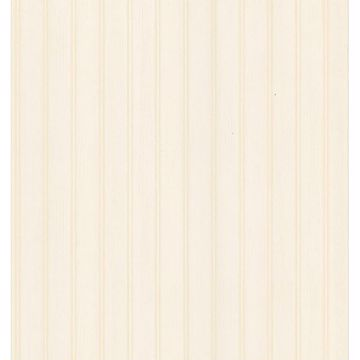 Picture of Aster Peach Beadboard