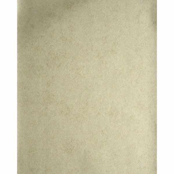 Picture of Star Khaki Texture