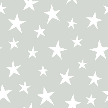 Picture of Stardust Grey Peel And Stick Wallpaper