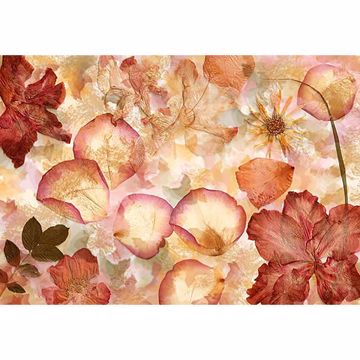 Picture of Dried Flowers Wall Mural