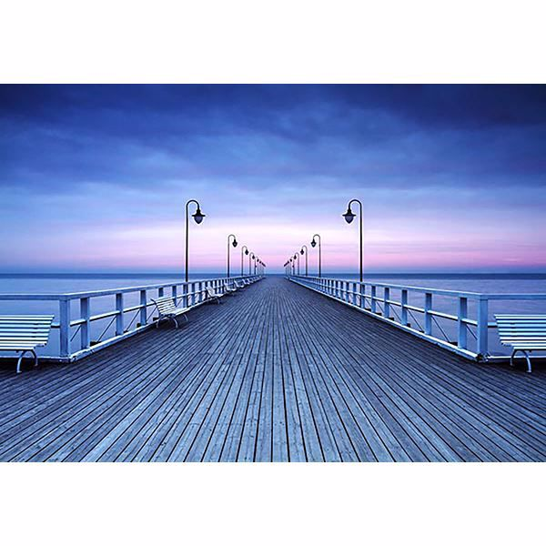 Picture of Pier at the Seaside Wall Mural