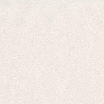 Picture of Cary Beige Texture