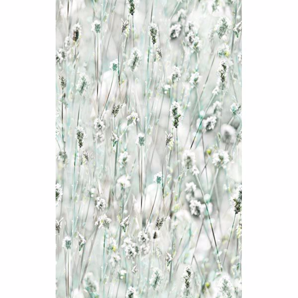 Picture of Wildflowers Window Film