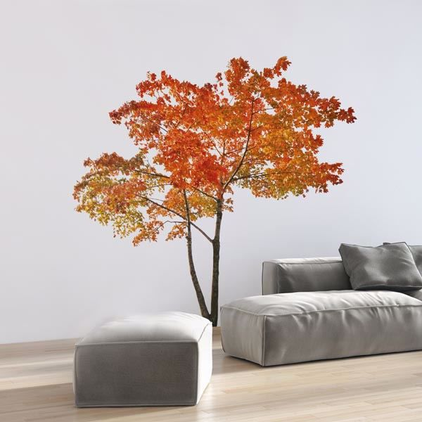 Picture of Orange Tree Wall Decals