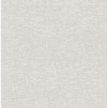 Picture of Azmaara Grey Texture