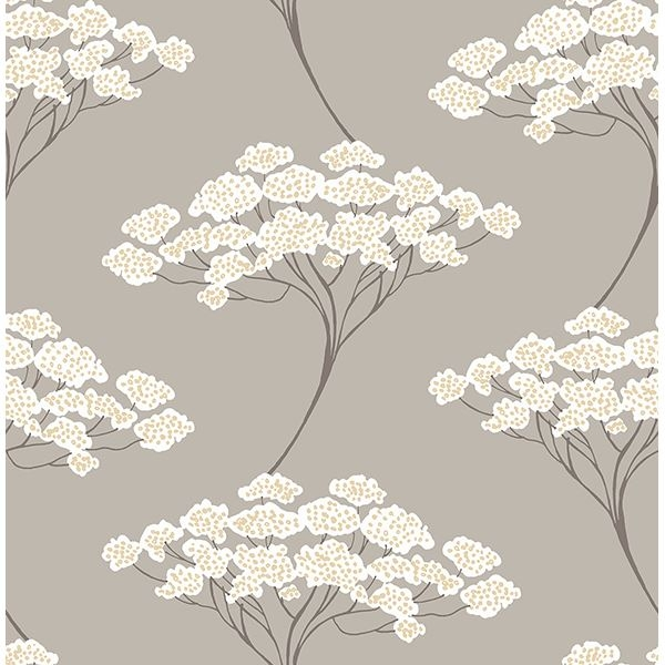 Picture of Banyan Taupe Tree