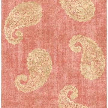 Picture of Kashmir Coral Paisley Wallpaper