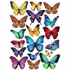 Papillon Multi Small Wall Art Kit