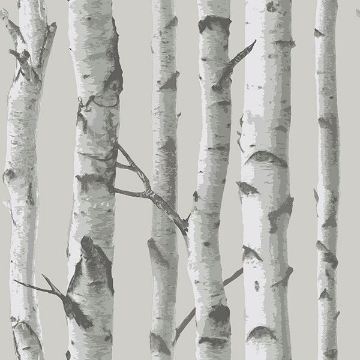 Picture of Mountain Birch Grey Peel And Stick Wallpaper