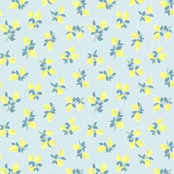 Citron Soft Pink Juicy Lemon Wallpaper