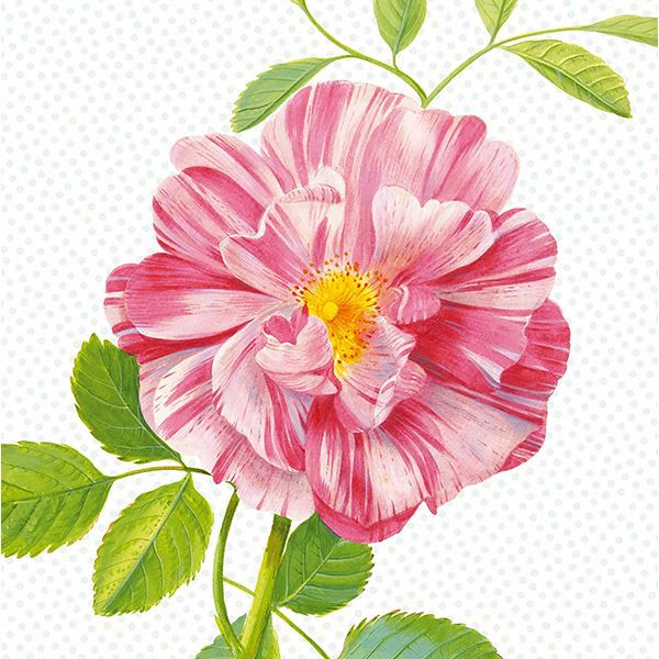 Picture of Peony Wall Mural