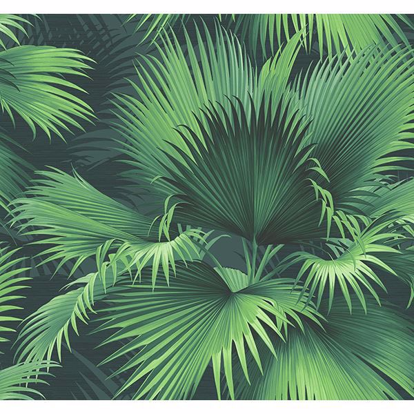 Picture of Endless Summer Dark Green Palm Wallpaper
