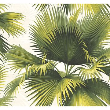 Picture of Endless Summer Green Palm Wallpaper