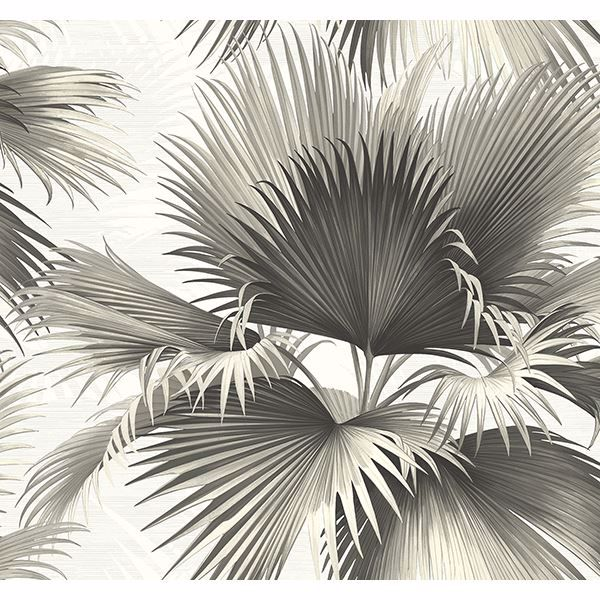 Picture of Endless Summer Black Palm Wallpaper