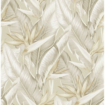 Picture of Arcadia Beige Banana Leaf Wallpaper