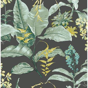 Picture of Maui Black Botanical Wallpaper