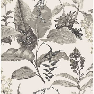 Picture of Maui White Botanical Wallpaper
