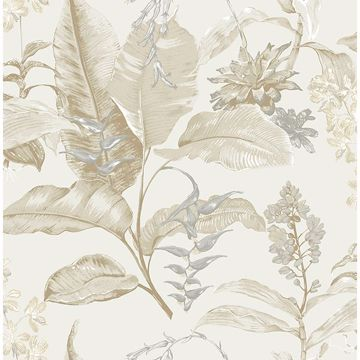 Picture of Maui Beige Botanical Wallpaper