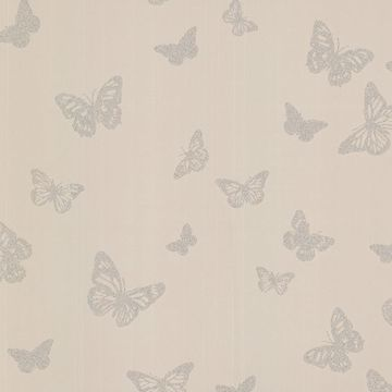 Picture of Café Pearl Butterfly Wallpaper