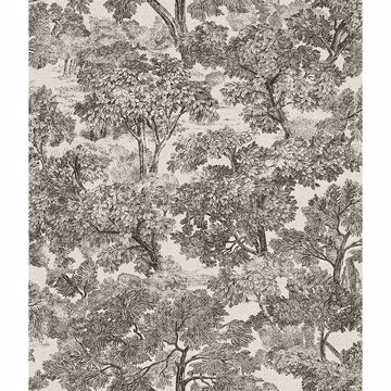Picture of Blyth Black Toile Wallpaper