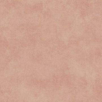 Picture of Crawley Coral Texture Wallpaper