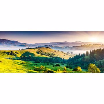 Picture of Horizon Panoramic Wall Mural