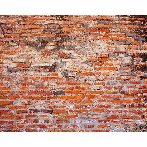 Picture of Red Brick Wall Mural