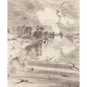 Picture of Hirundo Cream Wall Mural
