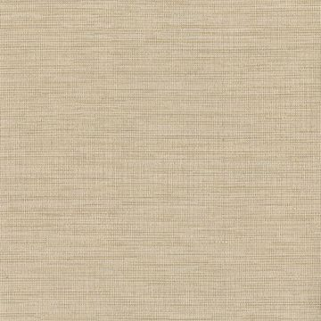 Picture of Giana Taupe Horizontal Silk Wallpaper