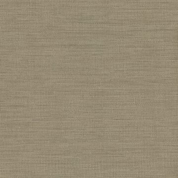 Picture of Giana Brown Horizontal Silk Wallpaper
